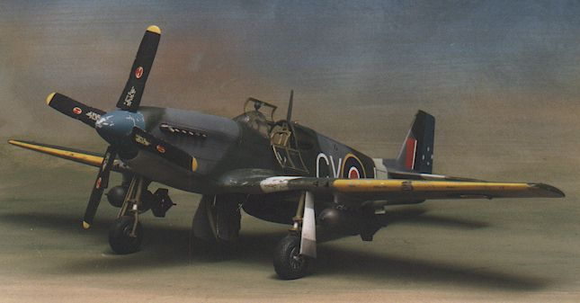 p51 d mustangs essay The early mustangs were powered with the same allison engine that some great reference links on the p-51 mustang: http://wwwmustangsmustangsnet/p-51/p51.