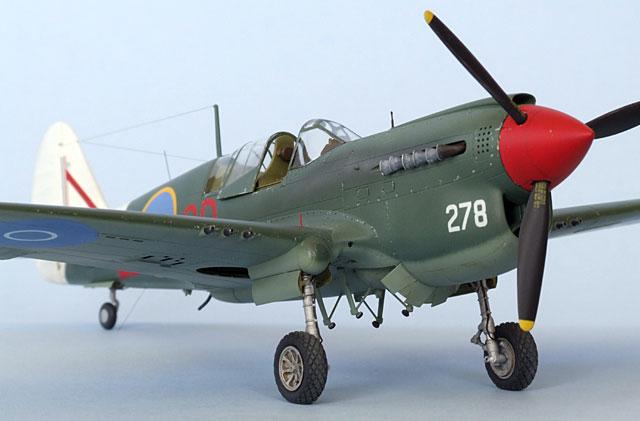 Curtiss P-40N-25 by Bruce Salmon (Hasegawa 1/48)
