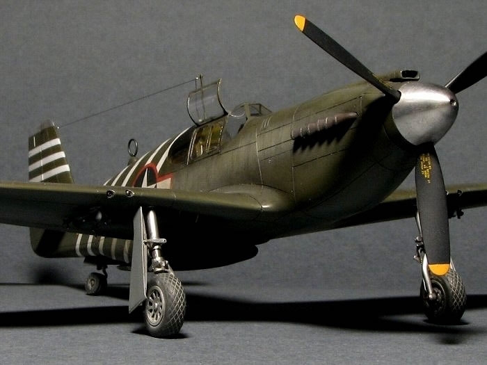 Accurate Miniatures 1 48 P 51a Mustang By Jumpei Temma